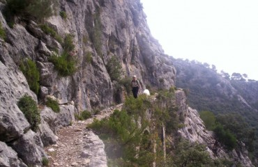 Charles Davis Goes Walking in Mallorca and Discovers the Canaleta de Massanella