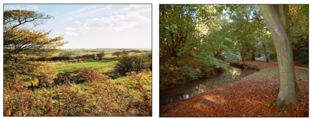 the wolds - midlands.PNG
