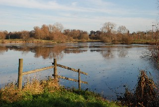 Lackford Lakes Pic.jpg