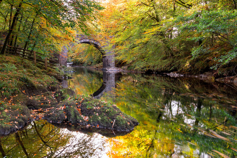 Dartmoor_Autumn on the river Dart at Holne Bridge on Dartmoor in Devon.jpg