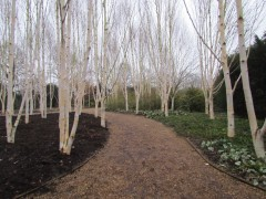 Anglesey abbey2.JPG