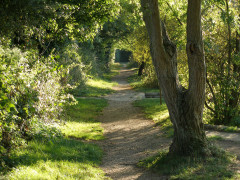 National Trails: Thames Path