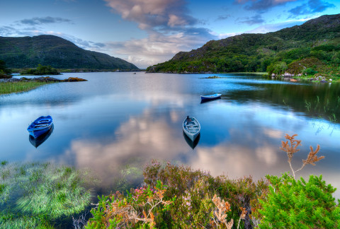Killarney National Park, Kerry, Ireland