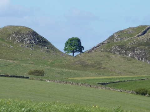 Housesteads Circular.jpg
