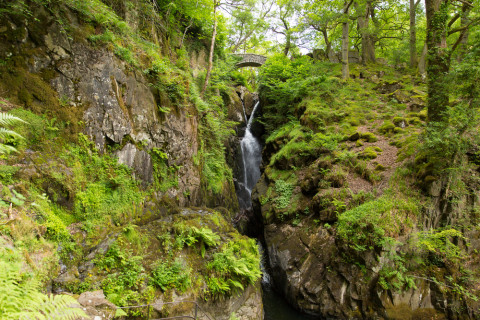 The Lake District: Aira Force Waterfalls by Mike Charles/Shutterstock